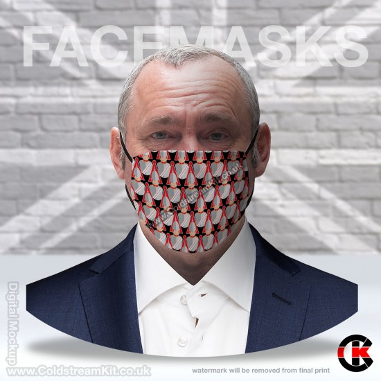 Blues and Royals Regimental Face Mask (Non Medical Use) - FREE POSTAGE